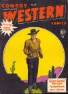 Cover For Cowboy Western 27