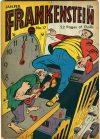 Cover For Frankenstein 17
