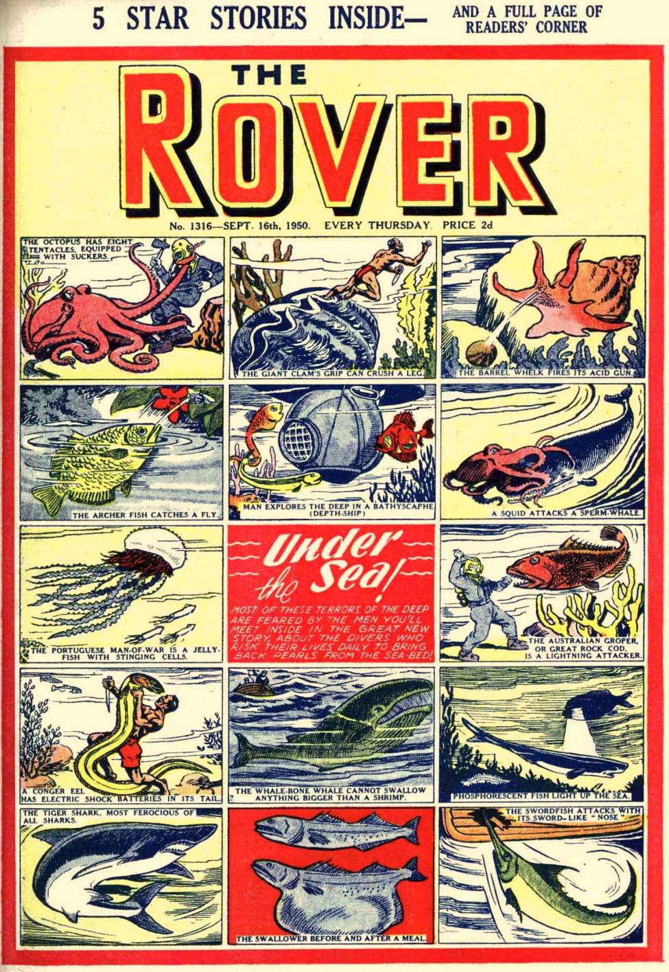 Comic Book Cover For The Rover 1316