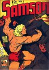 Cover For Samson 1