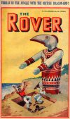 Cover For The Rover 1020