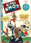 Cover For Big Shot 71
