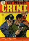 Cover For The Perfect Crime 11