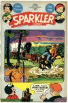 Cover For Sparkler 99
