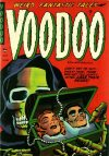 Cover For Voodoo 15