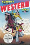 Cover For Cowboy Western 37