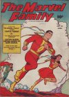 Cover For The Marvel Family 22