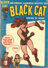 Cover For Black Cat 5