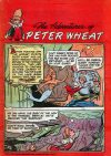 Cover For The Adventures of Peter Wheat 37