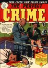 Cover For The Perfect Crime 27