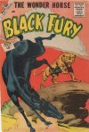 Cover For Black Fury 36