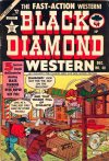 Cover For Black Diamond Western 48