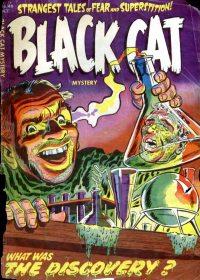 Large Thumbnail For Black Cat #46