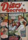 Cover For Diary Secrets 15