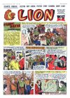 Cover For Lion 301