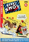 Cover For Big Shot 34