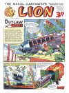 Cover For Lion 24