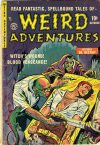 Cover For Weird Adventures 3