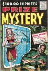 Cover For Prize Mystery 3