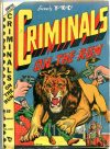 Cover For Criminals on the Run v4 1