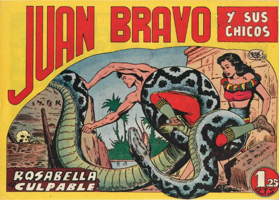 Comic Book Cover For Juan Bravo 15