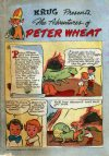 Cover For The Adventures of Peter Wheat 8