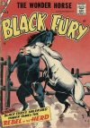 Cover For Black Fury 9