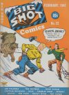 Cover For Big Shot 22